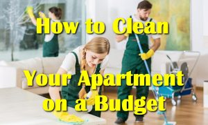 How to Clean Your Apartment on a Budget